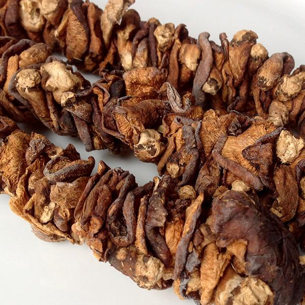 Nấm hương rừng Sapa đặc sản đến từ vùng núi rừng Tây Bắc